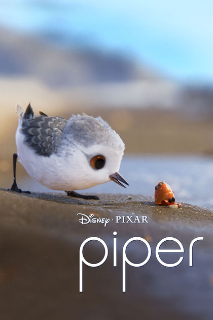 Piper Online Desene Animate Scurtmetraj