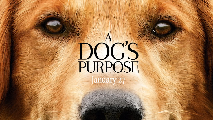 Sinopsis Film / Alur Cerita Film A Dog's Purpose (2017)