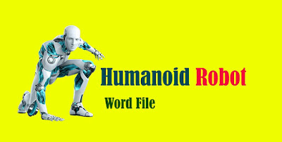 Humanoid  Robot MBA Project