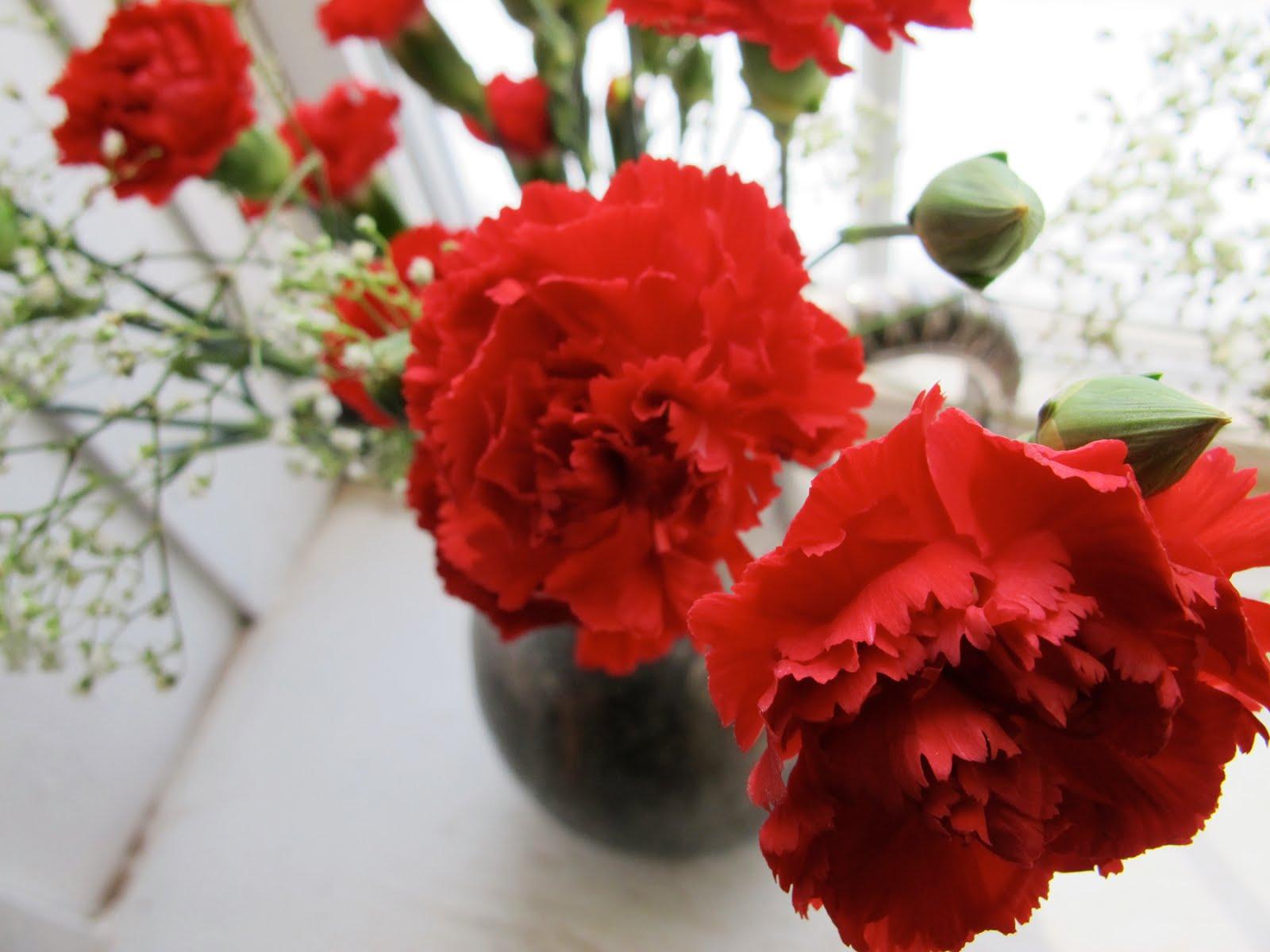 Flower Wallpaper Free Cheap Red Flowers