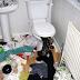 Kucing mati dalam rumah tersepit di mangkuk tandas