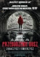 https://www.filmweb.pl/film/Przebudzenie+dusz-2017-767751