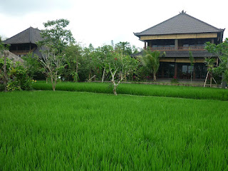 Job Vacancy as Cook at Bliss Ubud Spa & Bungalow