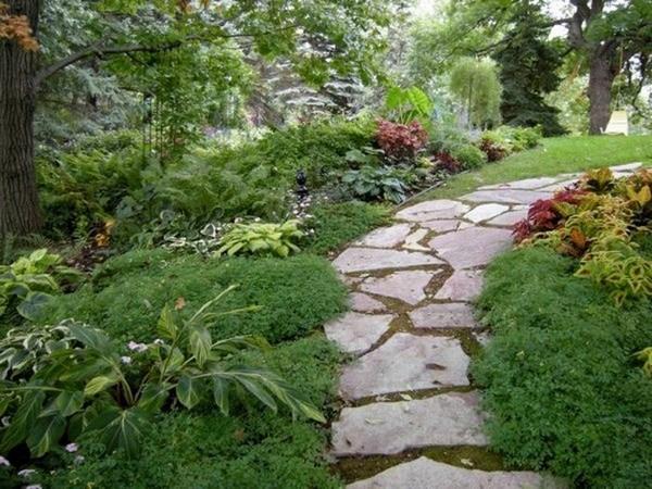 Garden Paths A Creative Atmosphere
