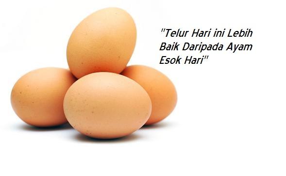 pepatah arab, telur hari ini lebih baik daripada ayam esok hari, arzmoha, pepatah arab, telur ayam, 4 biji telur ayam, kata-kata nasihat, kata-kata motivasi, syukuri jangan kufuri, tips motivasi,