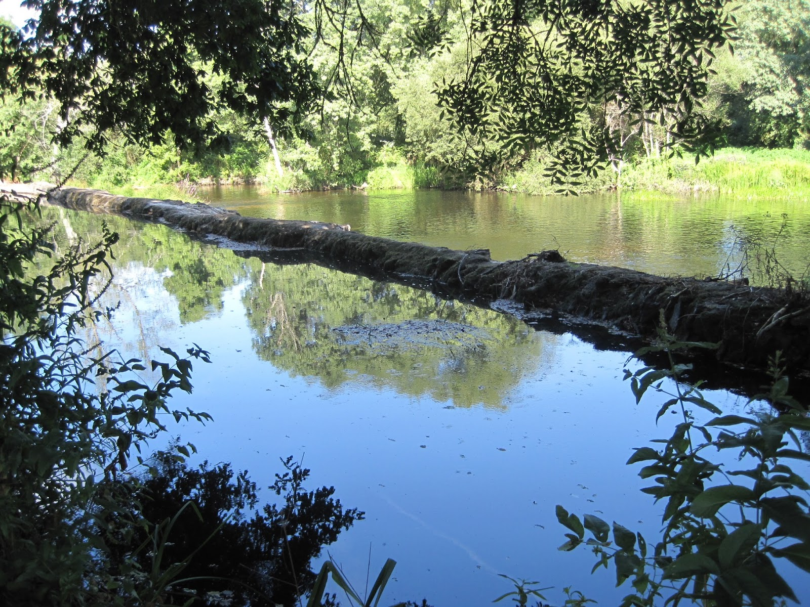 Río Tambre en Sigüeiro