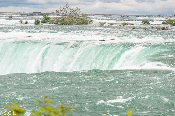 Horseshoe falls. Catarata Niagara