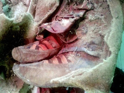 Adidas trainers on a Mummy.