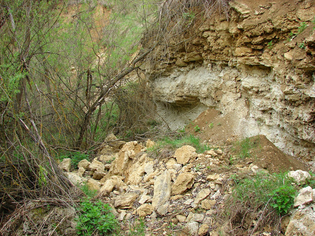 Овраг-ущельице возле водопадика