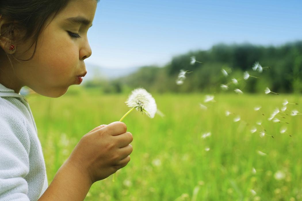 aa1fe541c18d Kan ju alltid hoppas att de unga föräldrarna också tar med sig barnen ut i  naturen emellanåt, i artikeln menar man att böckerna blir en ersättning för  att ...