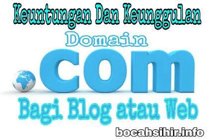 Keuntungan dan Keunggulan Jika Menggunakan Domain dot Com (.com)