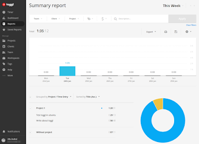 Toggl online reports