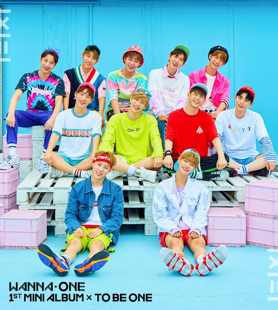 Wanna One | 1st Mini Album Cover (Pink Ver.)