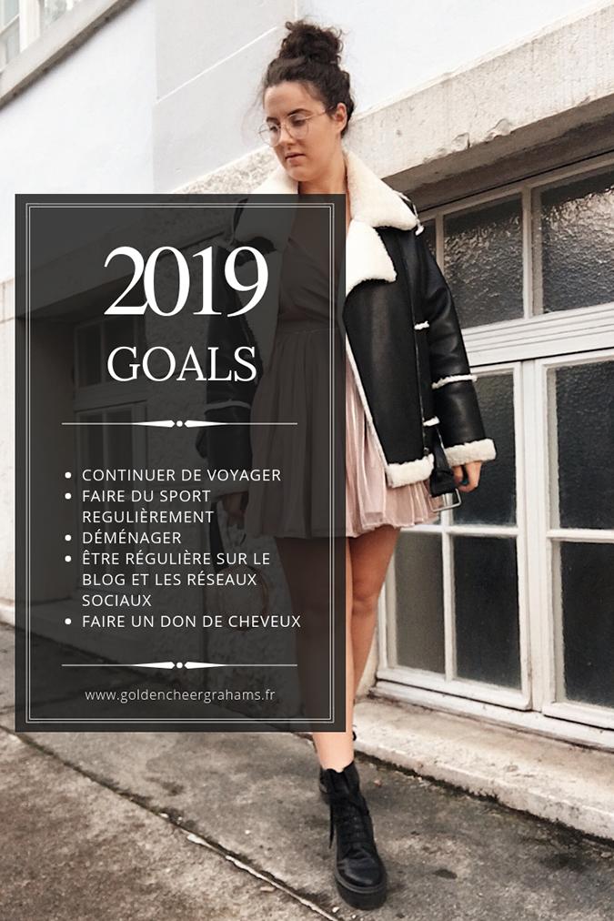 2019 Goals ! - Golden Cheer Grahams