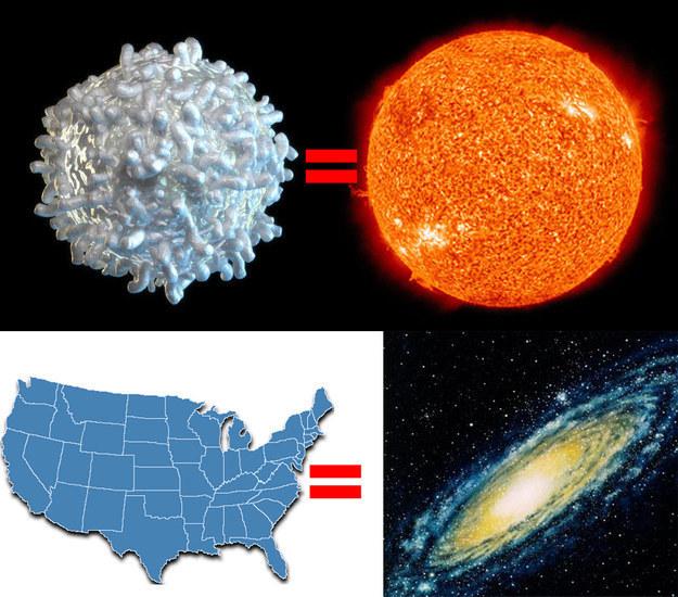 حجم-مجرة-درب-التبانة-مقارنةً-بحجم-الشمس