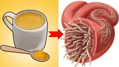 19 Signs #parasites are #dwelling in your #body-These #herbs can help #pulverize them [#natural #remedy]