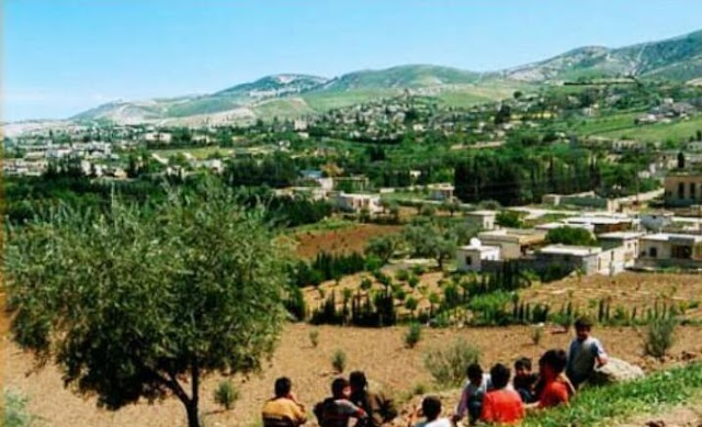 """مسلحي الدولة التركية  يستولون على منازل أهالي بلدة """"شيا"""" وينهبون ممتلكاتهم"""