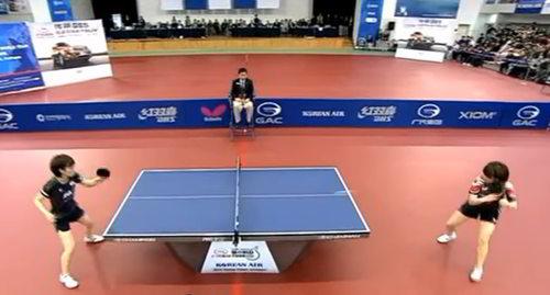 lapangan tenis meja (pingpong)