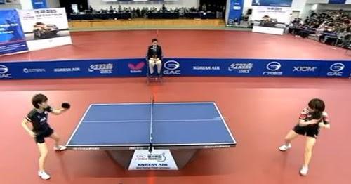 Ukuran Lapangan Tenis Meja Pingpong Standar Nasional Maupun Internasional