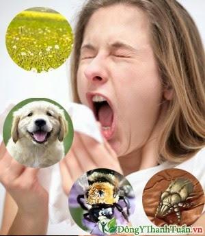 nguyên nhân viêm mũi dị ứng