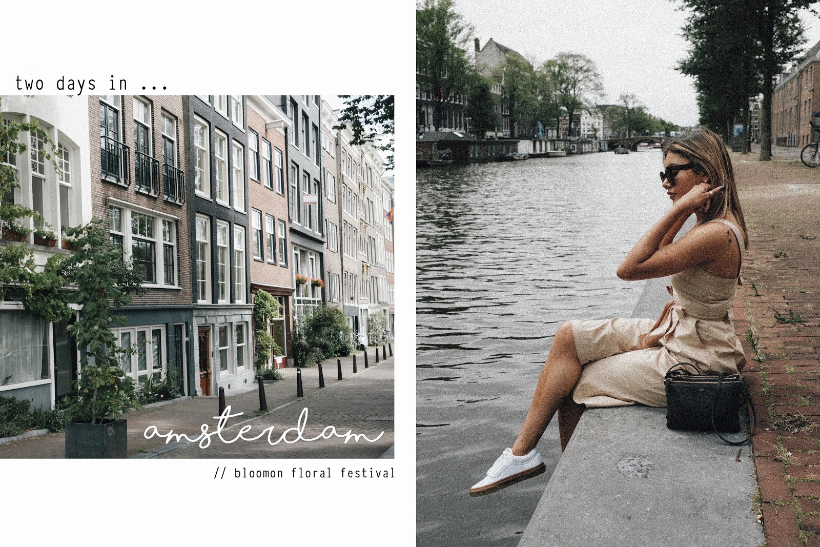 I Overcame My Anxiety and Flew to Amsterdam On My Own // Bloomon Floral Festival