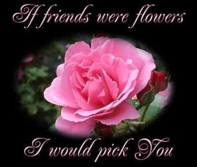 Free Friendship Love Wallpapers, Love Friendship Pictures ...
