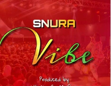 Download Audio | Snura - Vibe