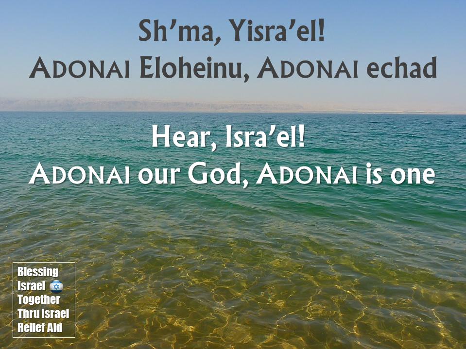 Blessing Israel Together: June 2016