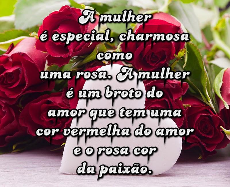 A Mulher é Especial Charmosa Como Uma Rosa A Mulher é Um Broto Do