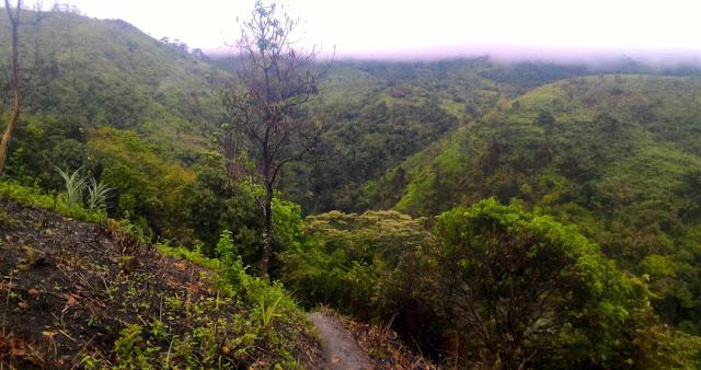 Timmanguyob Trail