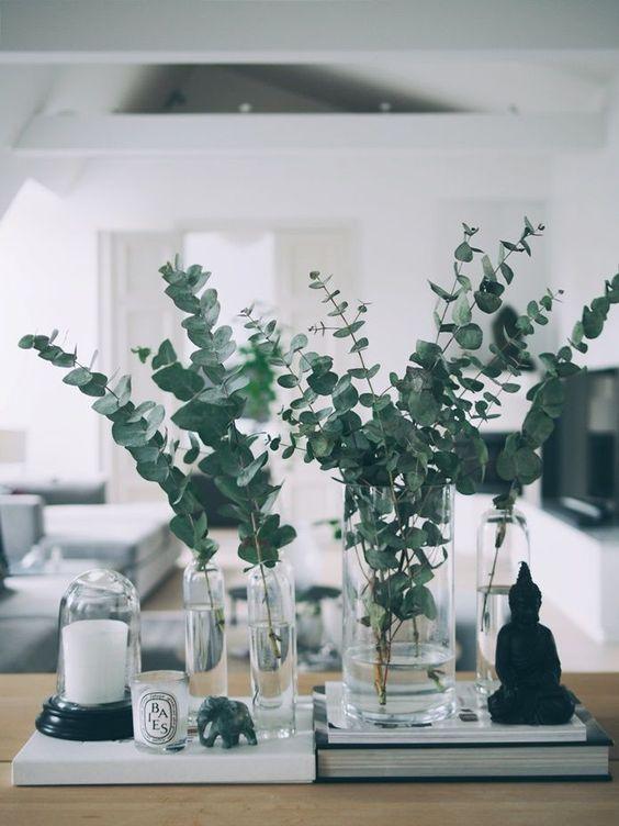 jarrón con eucalipto fresco