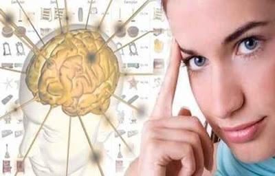 daya ingat otak