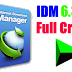 IDM 6.30 build 6 Setup+Crack Free Download Manager