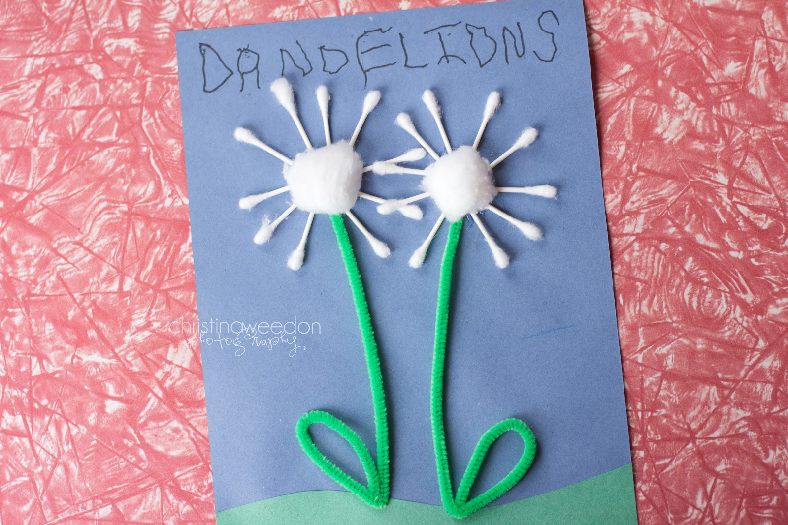 Dandelions on the Wall Homeschool The Letter D crafts