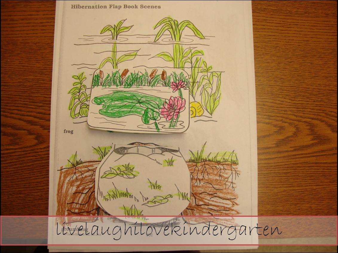 Live Laugh I Love Kindergarten Hibernation Flap Book