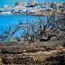 Αντιπλημμυρικά έργα προστασίας σε Ραφήνα και Μαραθώνα Ανέλαβαν δράση οι Ένοπλες Δυνάμεις