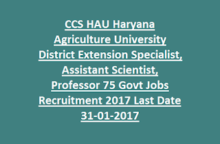 CCS HAU Haryana Agriculture University District Extension Specialist, Assistant Scientist, Professor 75 Govt Jobs Recruitment 2017 Last Date 31-01-2017