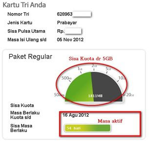 Cara Cek Sisa Kuota Internet 3 (Three)