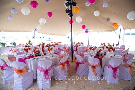 Blush pink light pink gold 13122017 carte abricot wedding aurlie thibault 26072017 junglespirit Images