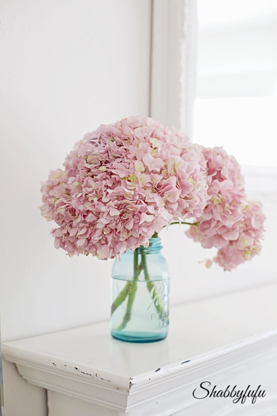 aqua mason jar with peonies