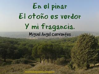 blogdepoesia-poesia-miguel-angel-cervantes-pinar