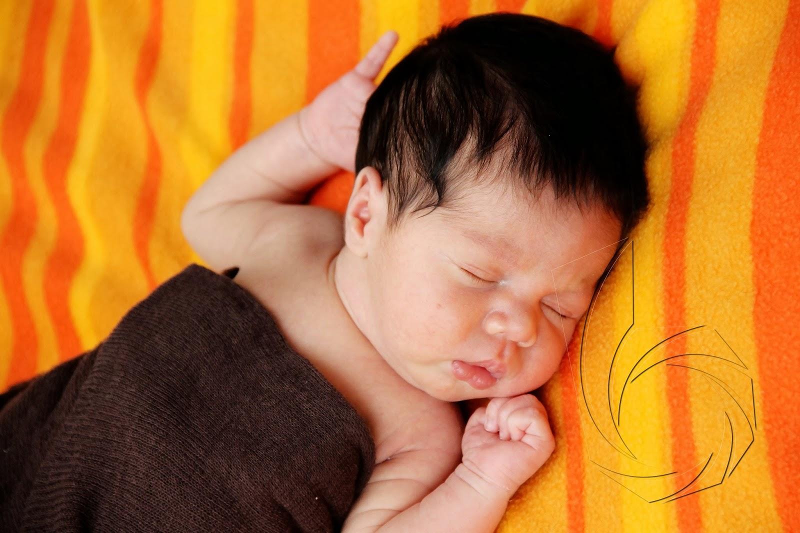 melhores fotos new born