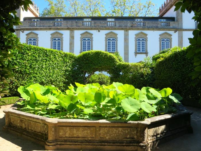 Casa da Ínsua - water lilies