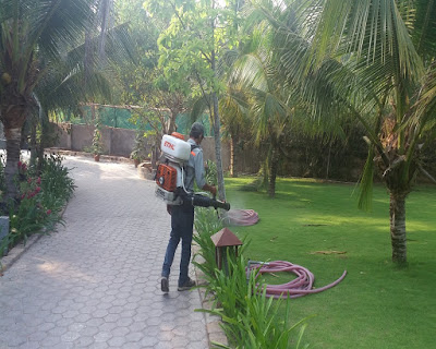 Diệt muỗi, diệt côn trùng tại Nam Định