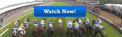 Melbourne Cup Live Stream 2015