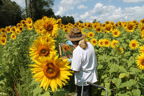 "essay about the sunflower Van gogh's ""sunflowers"" are among his most famous paintings, but few realize that many sunflower pictures, not only the most famous ""vase with twelve sunflowers"" and ""vase with fifteen sunflowers."