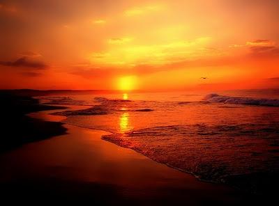Evening-nature-ocean