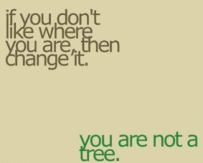 quote you dont like where you are,then change it,you are not a tree