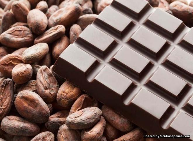 Coklat Mungkin 'Pupus' Pada Tahun 2050 Akibat Pemanasan Global