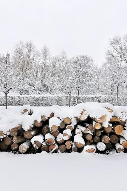 rondins de bois neige